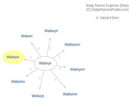 Baby Name Explorer for Wallwin