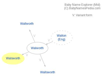 Baby Name Explorer for Walsworth