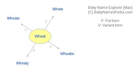 Baby Name Explorer for Wheat
