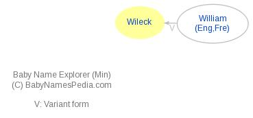 Baby Name Explorer for Wileck