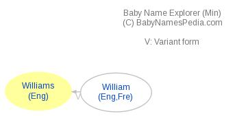 Baby Name Explorer for Williams