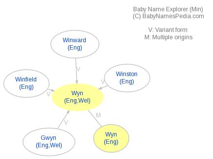 Baby Name Explorer for Wyn