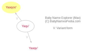 Baby Name Explorer for Yaaqoo'