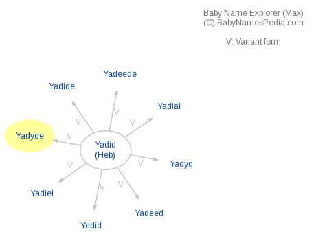 Baby Name Explorer for Yadyde