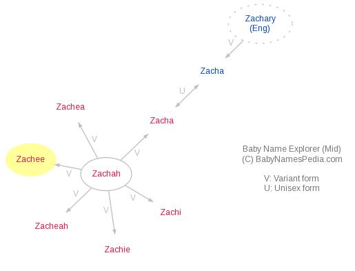 Baby Name Explorer for Zachee