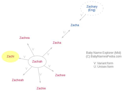 Baby Name Explorer for Zachi