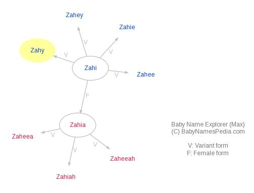 Baby Name Explorer for Zahy