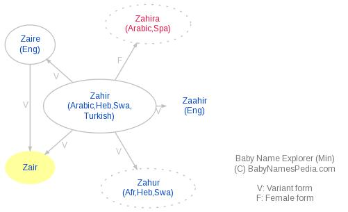 Baby Name Explorer for Zair