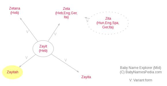 Baby Name Explorer for Zayitah