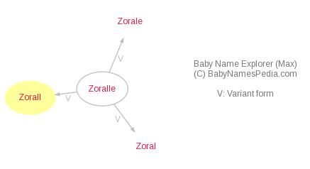 Baby Name Explorer for Zorall