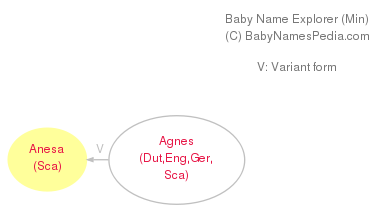 Baby Name Explorer for Anesa