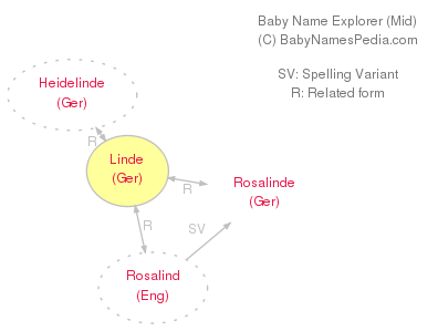 Baby Name Explorer for Linde