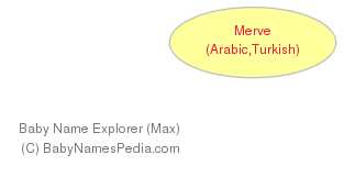 Baby Name Explorer for Merve
