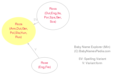 Baby Name Explorer for Roza