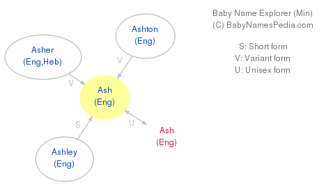 Baby Name Explorer for Ash