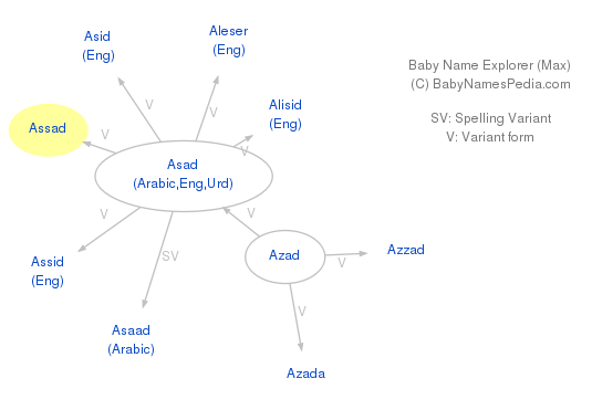 Baby Name Explorer for Assad