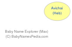 Baby Name Explorer for Avichai