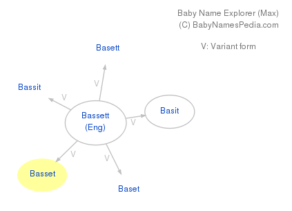 Baby Name Explorer for Basset