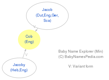 Baby Name Explorer for Cob