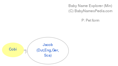 Baby Name Explorer for Cobi