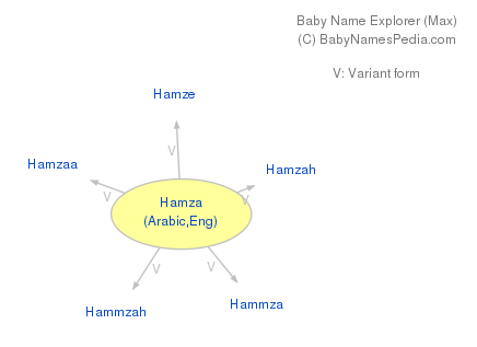 Baby Name Explorer for Hamza