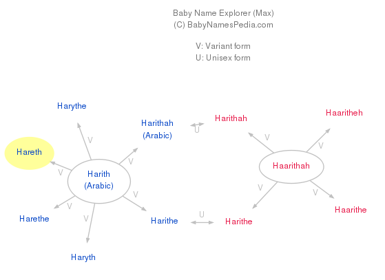 Baby Name Explorer for Hareth