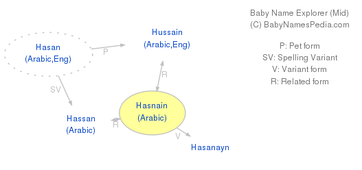 Baby Name Explorer for Hasnain