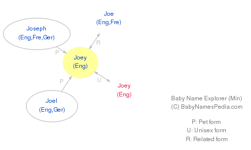 Baby Name Explorer for Joey