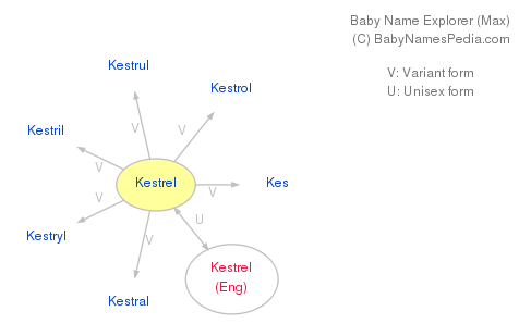 Baby Name Explorer for Kestrel