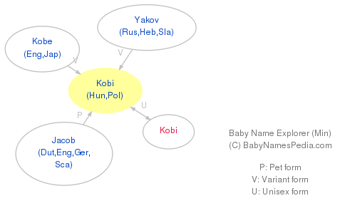 Baby Name Explorer for Kobi