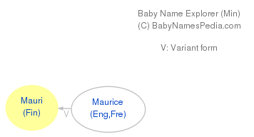 Baby Name Explorer for Mauri