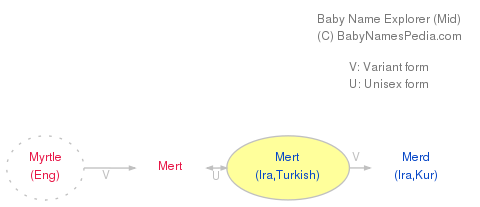 Baby Name Explorer for Mert