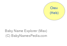 Baby Name Explorer for Orev