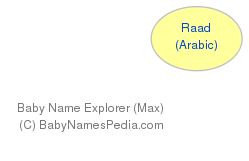 Baby Name Explorer for Raad