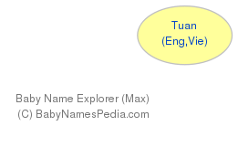 Baby Name Explorer for Tuan