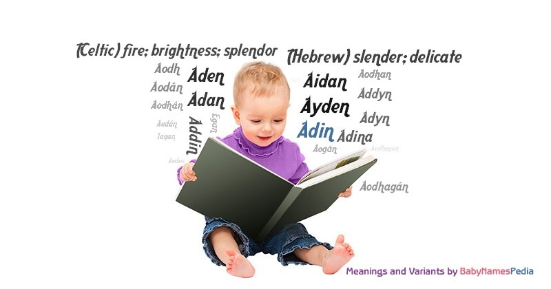 Meaning of the name Adin