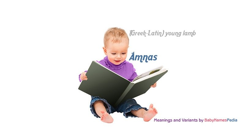 Meaning of the name Amnas
