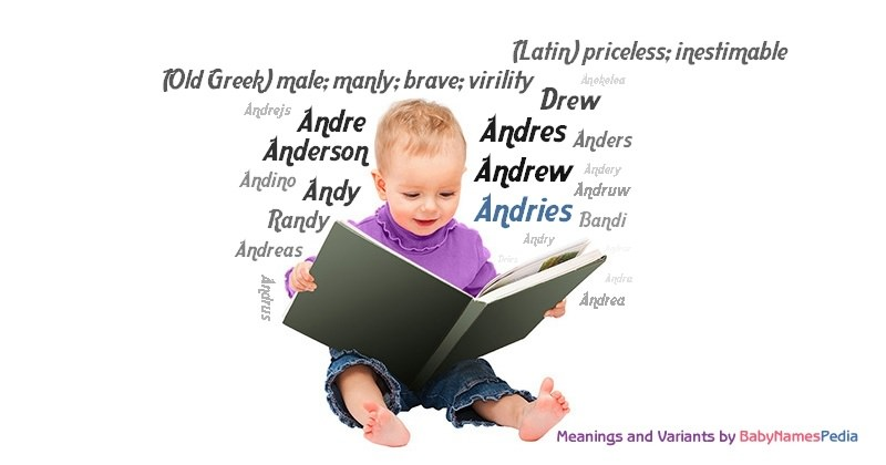 Meaning of the name Andries