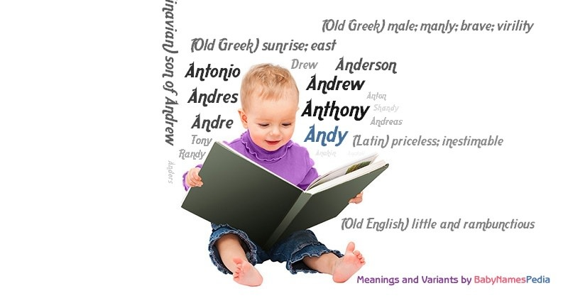 Meaning of the name Andy