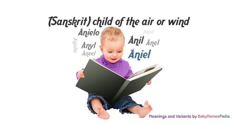 Meaning of the name Aniel