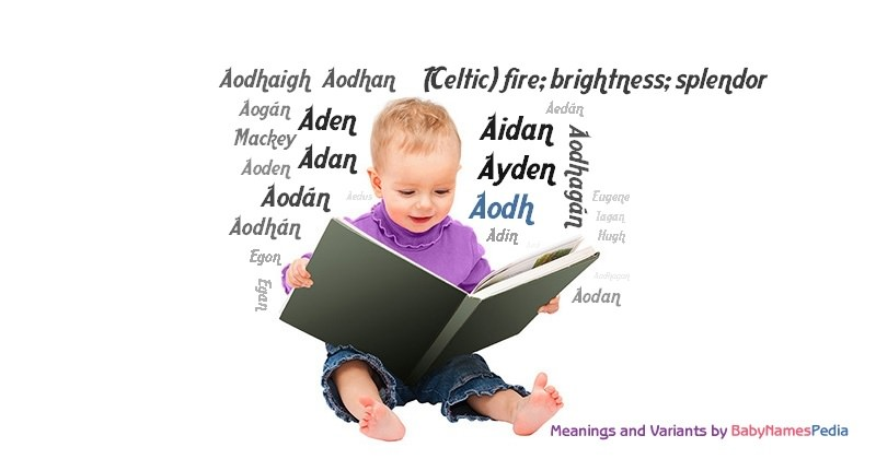 Meaning of the name Aodh