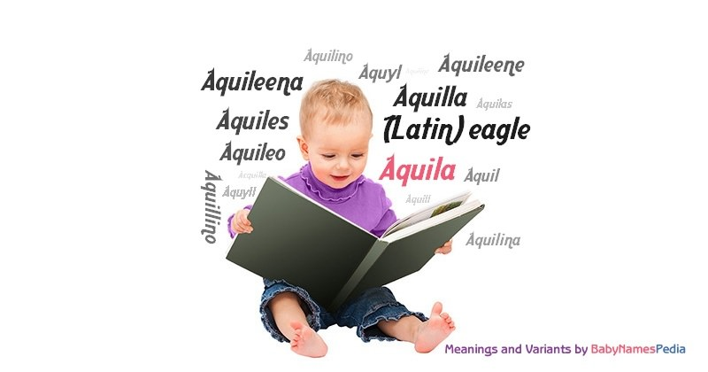 Meaning of the name Aquila