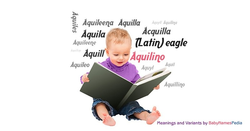 Meaning of the name Aquilino