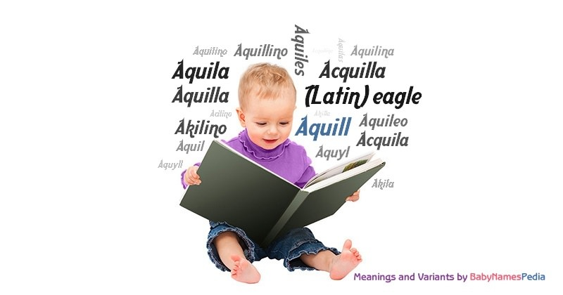 Meaning of the name Aquill