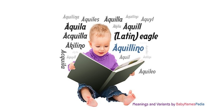 Meaning of the name Aquillino