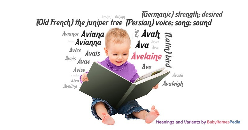 Meaning of the name Avelaine