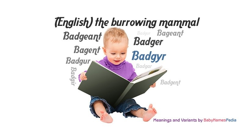 Meaning of the name Badgyr