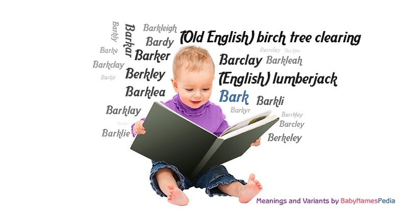 Bark - Meaning of Bark, What does Bark mean?