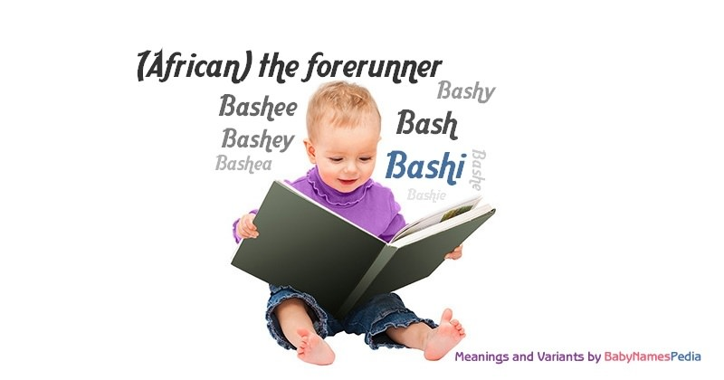 Meaning of the name Bashi