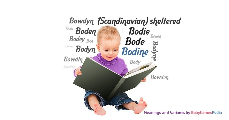 Meaning of the name Bodine